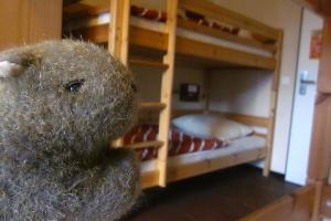 wombat-hostel-berlin