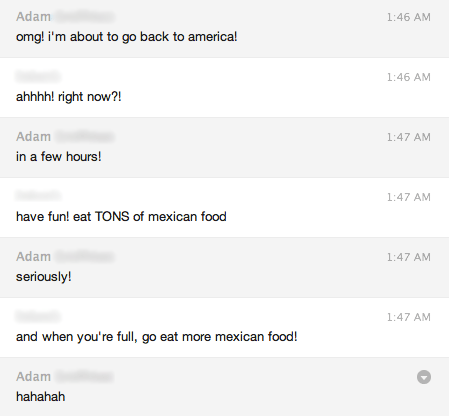 skype conversation about returning to america