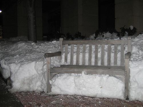 Boston winter: snow on Commonwealth Ave