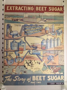 Extracting beet sugar poster
