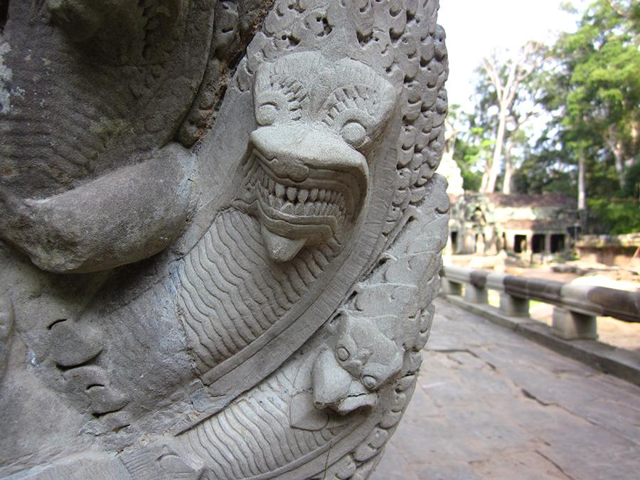 Ta Prohm temple, Angkor, Cambodia 9