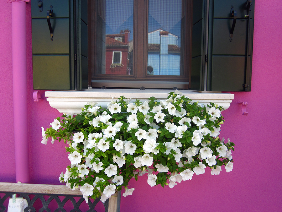 burano-color-window-21