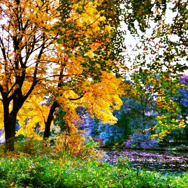 Tiergarten Park, Autumn in Berlin