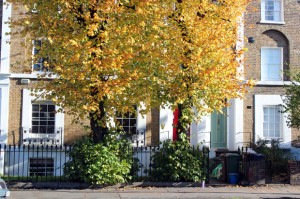 Dalston London