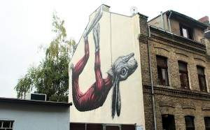 ROA street art in Cologne
