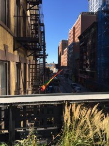 High Line NYC - PHOTOS - http://travelsofadam.com/2016/11/high-line/