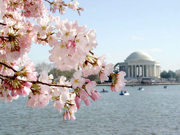 Washington, D.C. - Travels of Adam - https://travelsofadam.com/united-states/washington-dc/