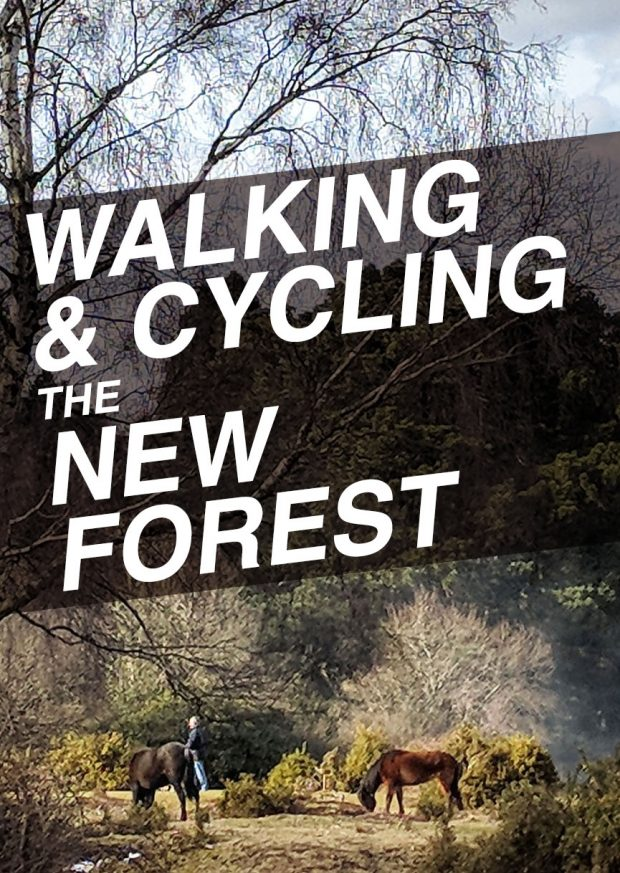 Walking and cycling the New Forest - Travel Tips